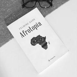 Afrotopia, la «réforme radicale»